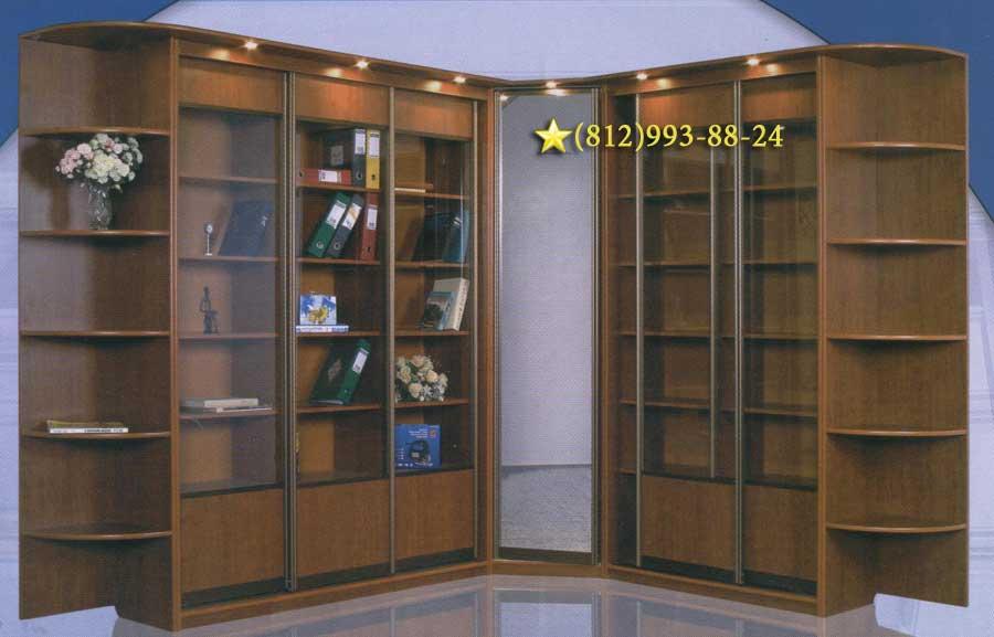 Книжный шкаф образец.